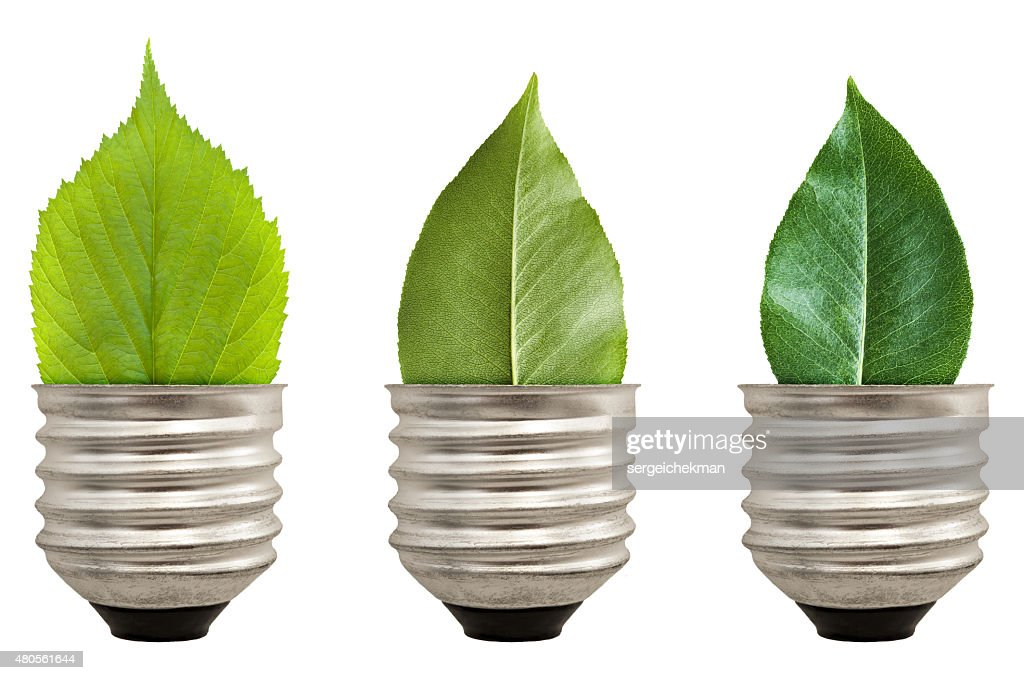 Green leaf light bulb : Stock Photo