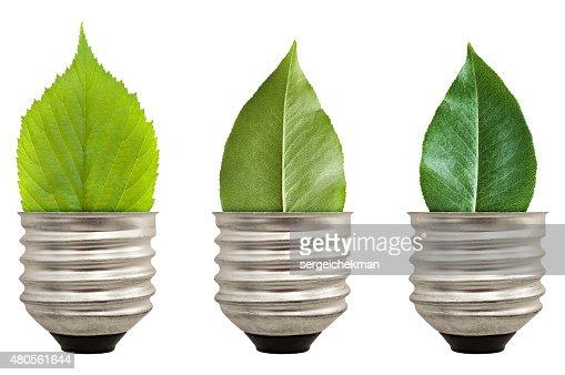 Green leaf light bulb : Stock Photo