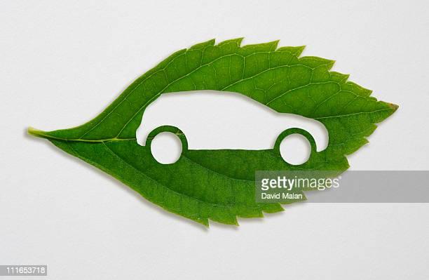 green leaf with a cut out car symbol