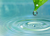 Tip of a green leaf dropping a droplet of water into water.  The tip of the leaf has a large water droplet.  There are smaller water droplets on other portions of the leaf and circular ripples in the
