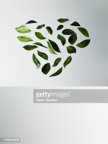 Green leaves forming heart-shape