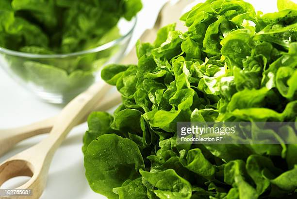 Green lettuce with salad servers