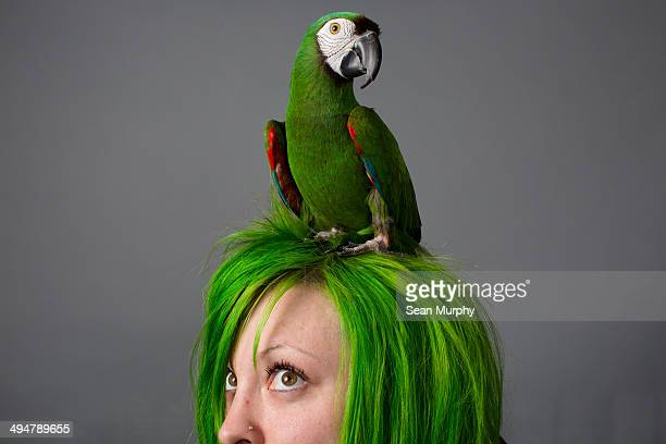 Green Macaw on Woman's Green Hair