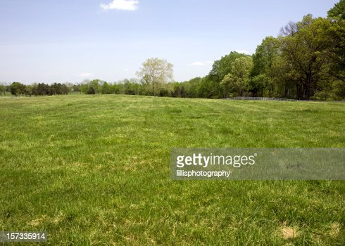 Green Meadow with White Fence