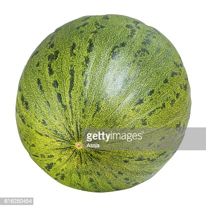 Green melon isolated on white background with clipping path : Foto de stock