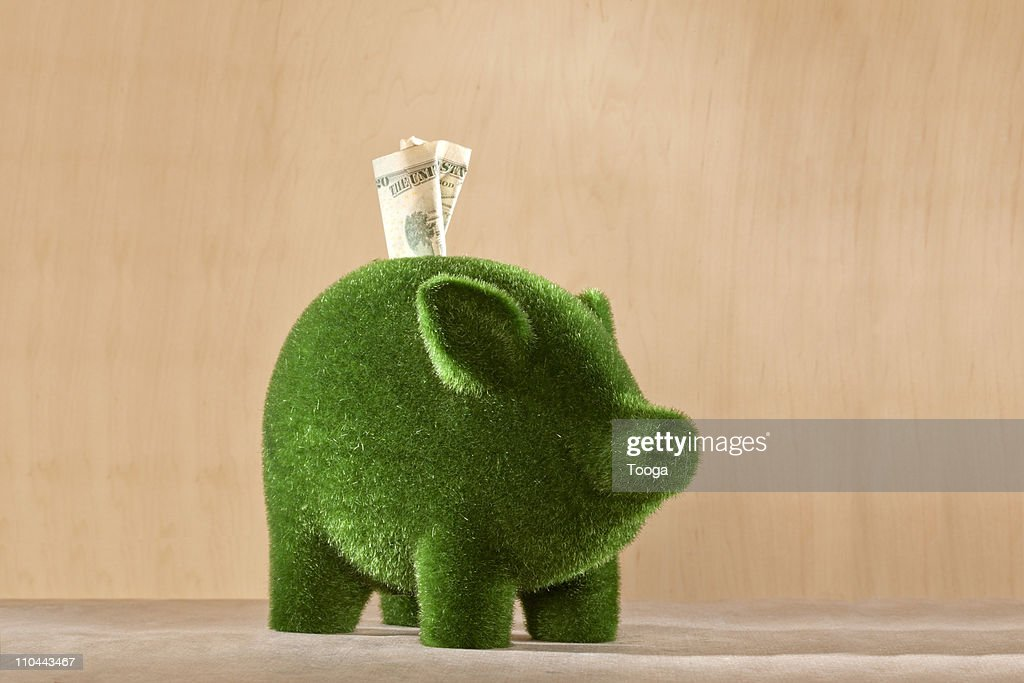 Green moss piggy bank with money in it : Stock Photo
