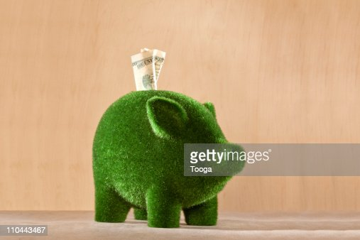 Green moss piggy bank with money in it : Stock-Foto