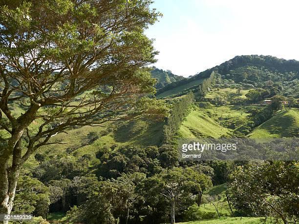 Green mountain forest, Ricon de la Vieja National Park, Province of Guanacaste, Costa Rica, Central America