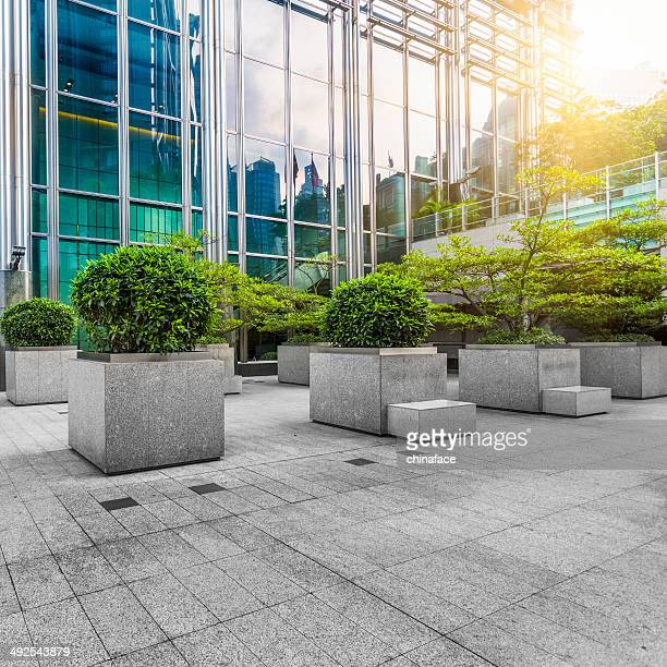 緑のオフィスエリアで香港