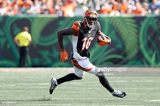 J Green of the Cincinnati Bengals carries the ball during the fourth quarter of the game against the Denver Broncos at Paul Brown Stadium on...