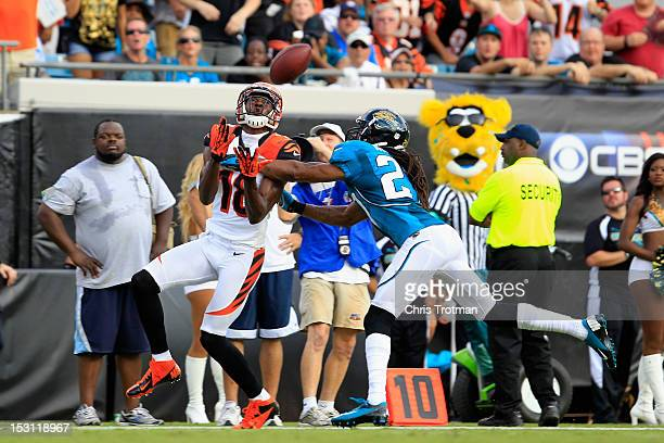 J Green of the Cincinnati Bengals catches the ball against Rashean Mathis of the Jacksonville Jaguars at EverBank Field on September 30 2012 in...