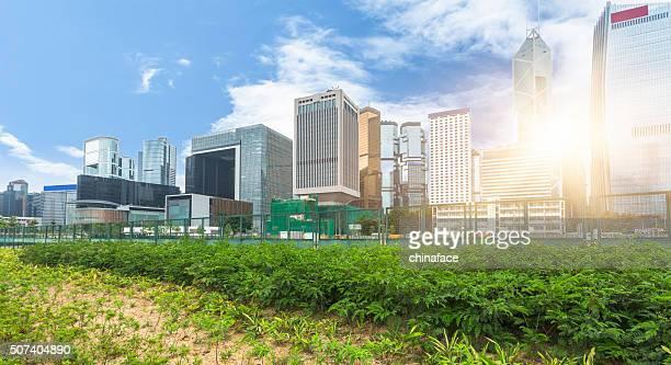 green office block of Hong Kong