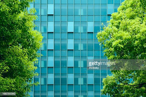 Green office building environment