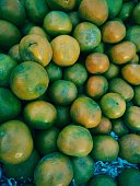The green orange is plucked from tree to supply in market.