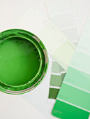 Green paint and paint swatches