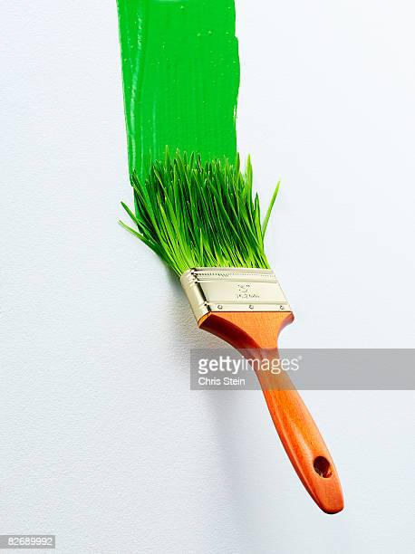 Green Paint Brush 2