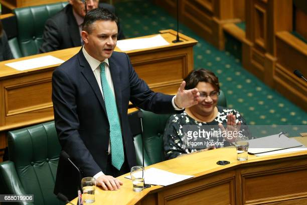 Green Party coleader James Shaw speaks while fellow coleader Metiria Turei looks on during the 2017 budget presentation at Parliament on May 25 2017...