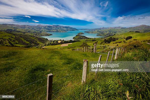 Green Pastures. Landscape in Akaroa, New Zealand