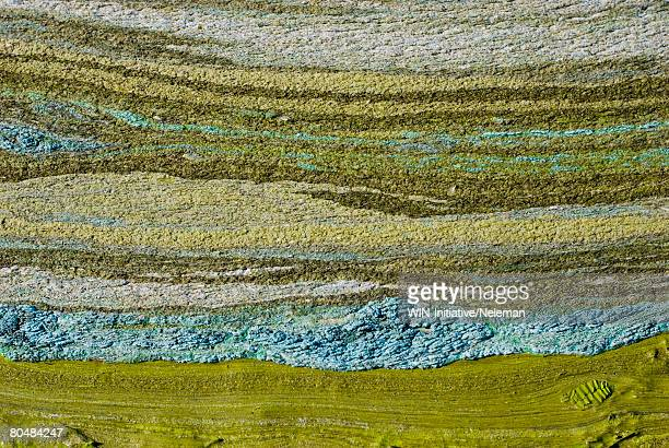 Green peat-silt with abstract horizontal lines