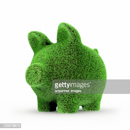 Green Piggy with gras bank on white