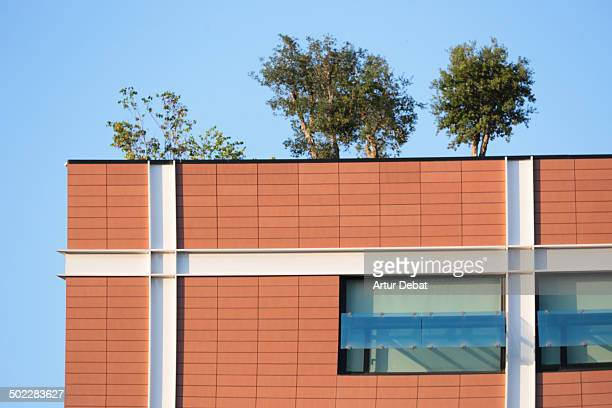 Green rooftop in the business quarter 22@ of Barcelona city