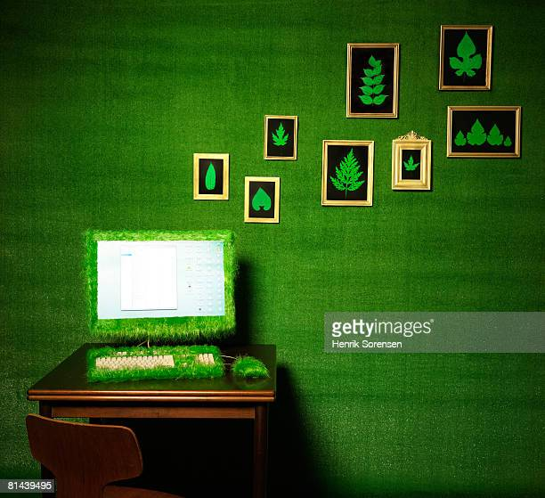 Green room with a turfed computer and pictures of leaves on the wall.