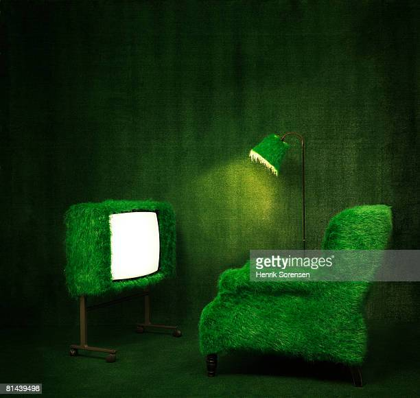 Green room with a turfed television.