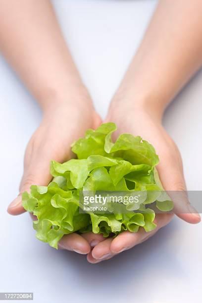 グリーンサラダのヤシ