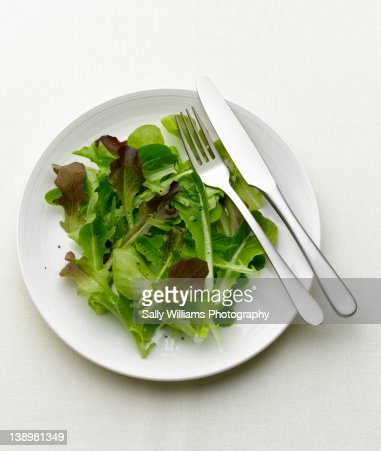 Green salad on a white plate : Stock Photo
