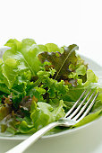 Green salad on plate with fork, close-up