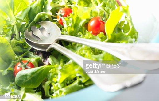 Green salad : Stock Photo