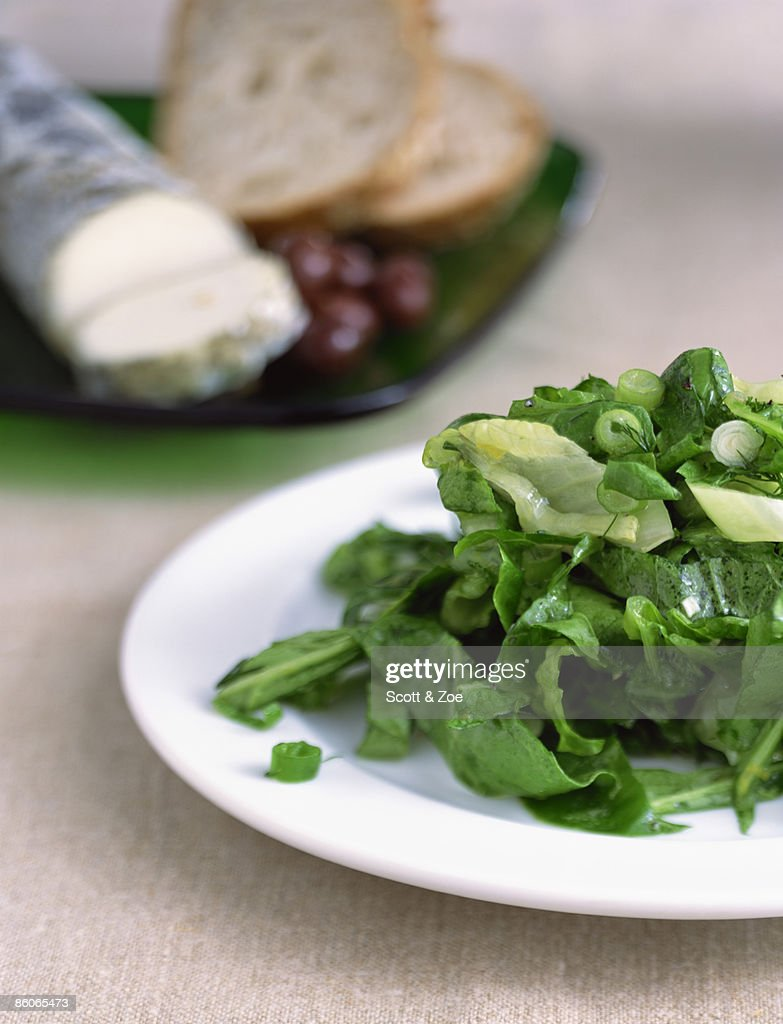 Green salad with herb vinaigrette : Stock Photo
