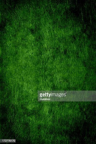 green scratched metal background
