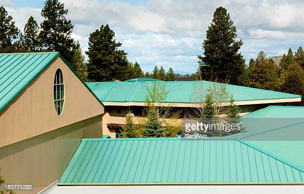 A green steel roof amongst trees