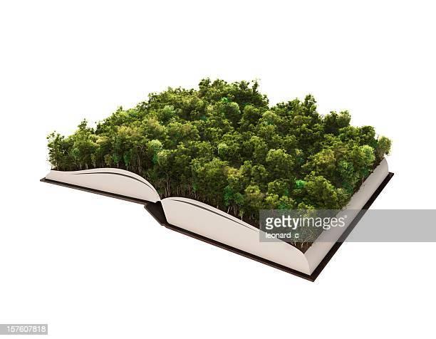 Green Geschichte