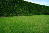 Formal Garden, Public Park, Ornamental Garden, Summer, Sun