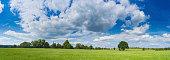 Green summer meadow big sky country farmland panorama