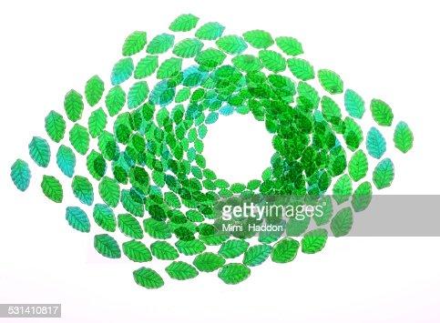 Green Transparent Leaf Candy on Lightbox