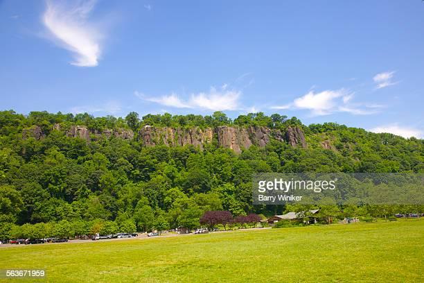 Green trees on the Palisades, NJ