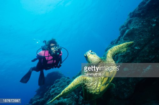 Green Turtle and Woman