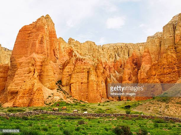 Green valley and red cliffs of Dhakmar, Nepal