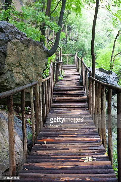 Green valley der Holz-Brücke