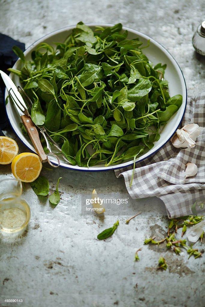 Green vegetables : Stock Photo