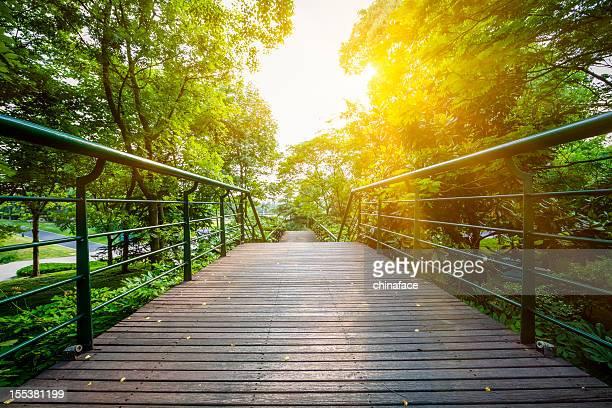 green  walkway