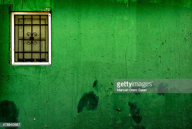 Green wall window