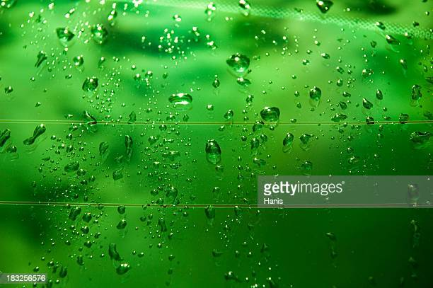 Green wet glass