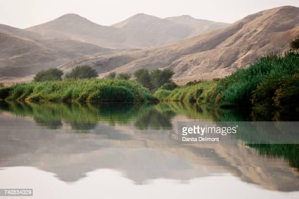 Greenery along banks of Kunene River, Kaokoveld Conservation Area, Northwestern Namibia, Namibia