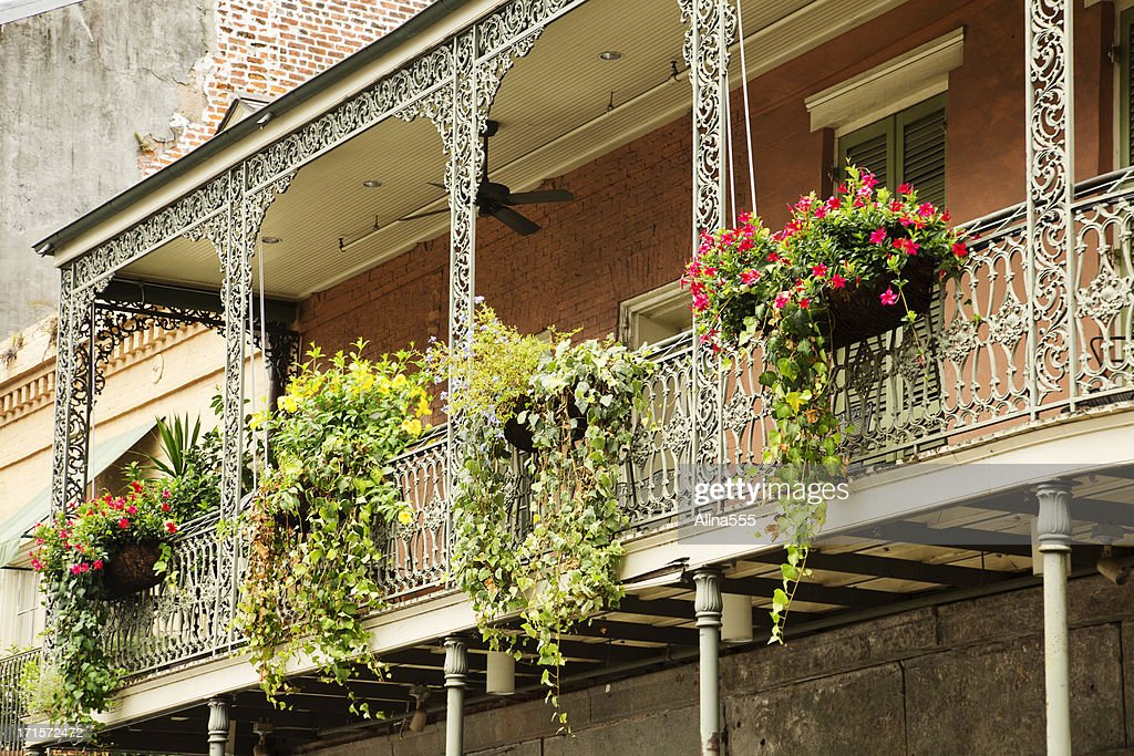 Greenery on the balcony in French Quarter, New Orleans, Louisian