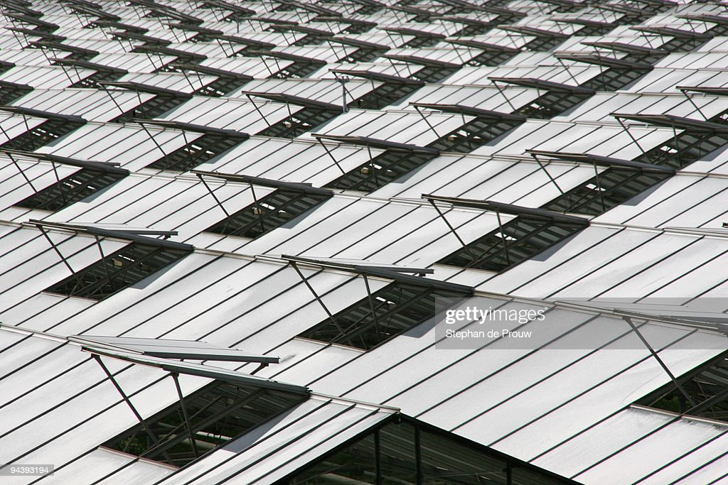 Greenhouse hatches : Stock Photo