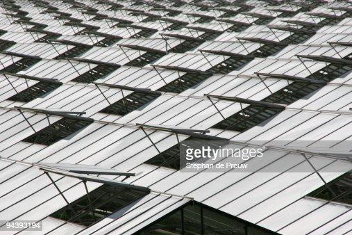 Greenhouse hatches : Foto de stock